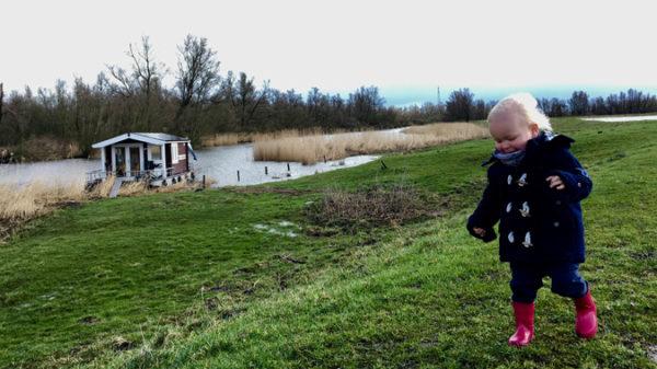 Op een blokhutboot door de Biesbosch met een dreumes!