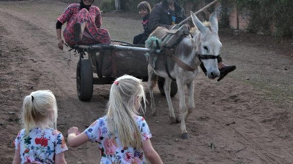Regina ging naar Meknes in Marokko met haar 2 kinderen: 'De cultuur is een belevenis op zich'