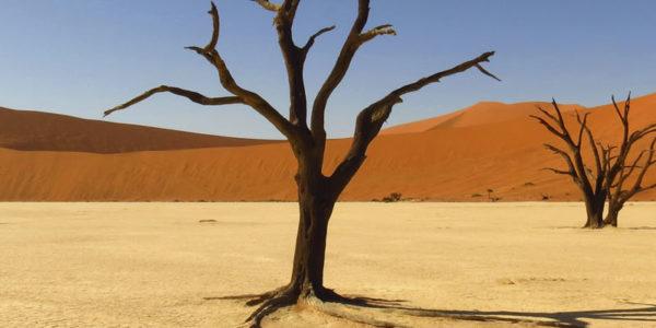 namibie-met-kinderen-header