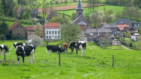 Dít zijn de leukste kindercampings van Limburg!